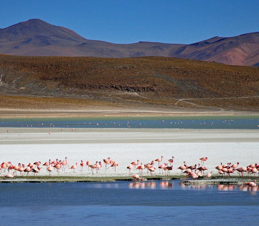 Atacama Bolivie Reizen Uyuni3 © Helen De Meyer